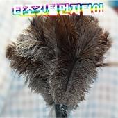 [청소용품]타조깃털먼지털이/먼지털이/청소용품