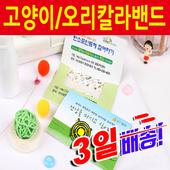 고양이/오리캐릭터칼라홍보용밴드 6매