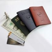 이태리 아르무늬여권지갑