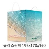 규격 칼라 코팅 쇼핑백 117호