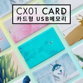 레빗 CX01 카드형 USB메모리 4GB