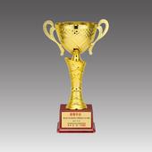스텐 컵 트로피 GA9-294-1