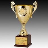 우승컵 트로피 / W7)45-새턴994(금/은)