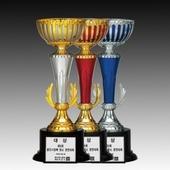 우승컵 트로피 / W7)88-BA708