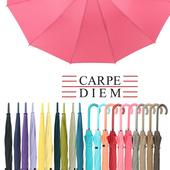 카르페디엠 3HHS0F01 장우산