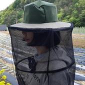 국산 꿀벌농장 방충모자