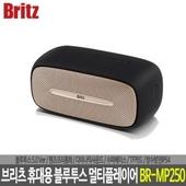 브리츠 휴대용 블루투스 멀티플레이어 BR-MP250
