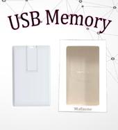 Mass Card Memory 4GB