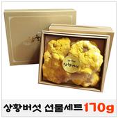 상황버섯/참나무상황버섯/버섯선물세트/설선물/추석선물/170g