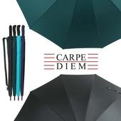 카르페디엠 3HHS0F05 장우산