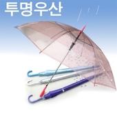 투명 흰색 칼라 비닐우산