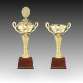 우승 대회 시상 트로피 주문제작_골드스트링_D