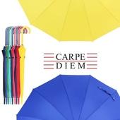 카르페디엠 3HHD71F9 장우산