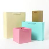 코팅 단색 종이 쇼핑백 (세로형)
