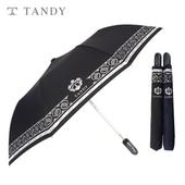 탠디 2단 보다 완전자동우산