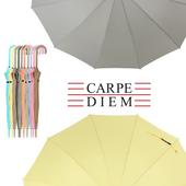 카르페디엠 3HHS0F01P 장우산