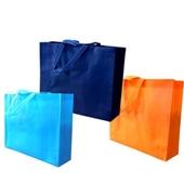 부직포가방가로고급형 의류 신발 선물세트가방