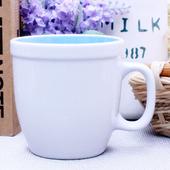 에코인블루머그컵